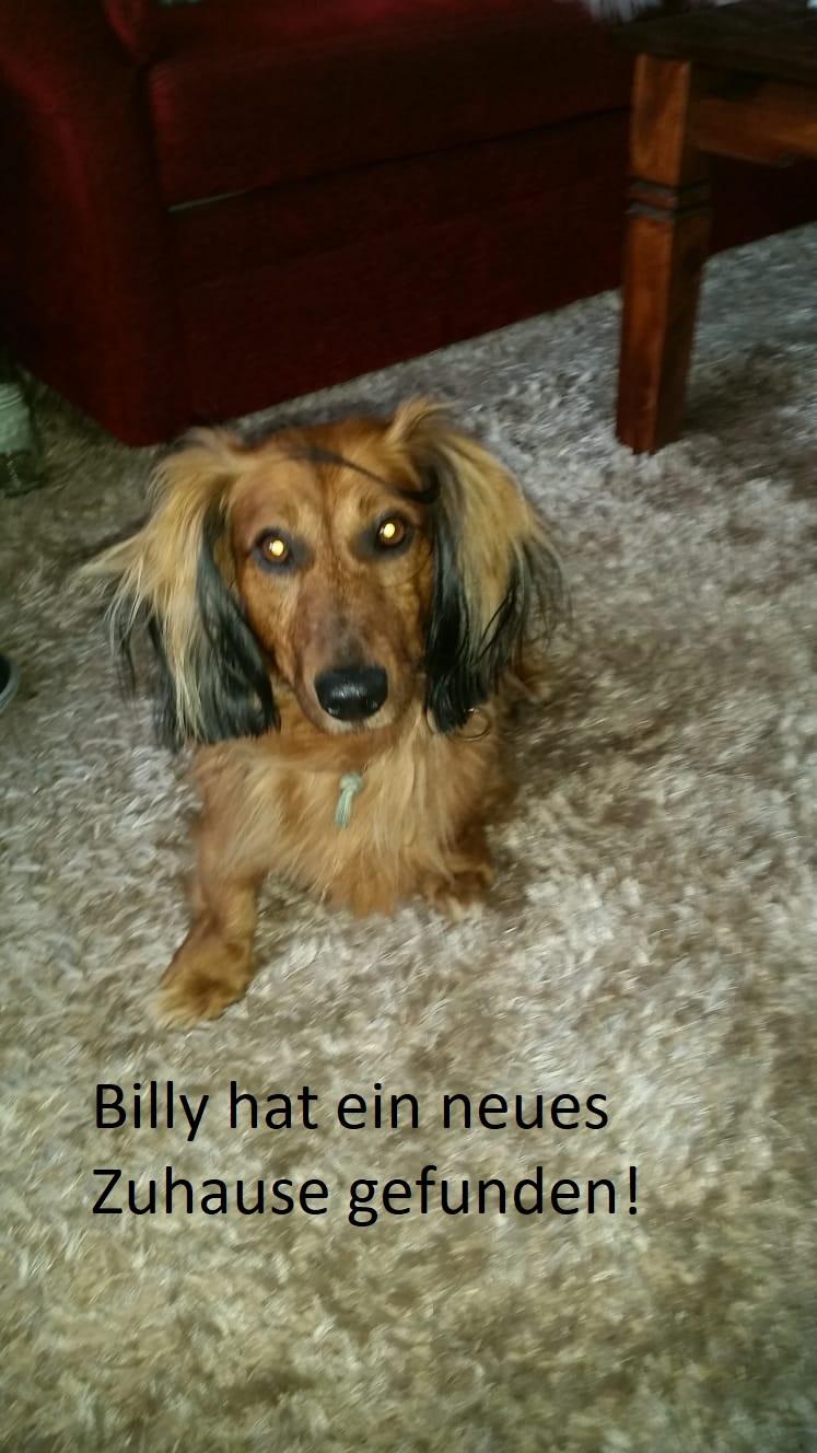 Billy vermittelt